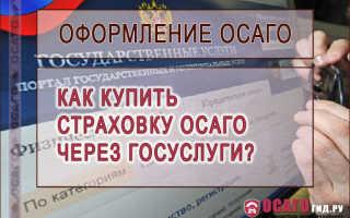 Как купить страхование гражданской ответственности онлайн через портал Госслужбы?