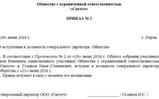 Указ о создании Генерального директора