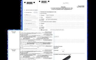 Что делать при отказе в регистрации ИП в 2021 году