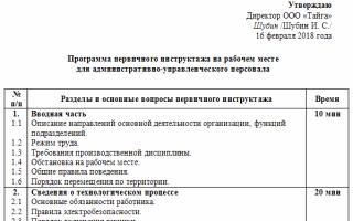Программа первичного инструктажа для командированного персонала
