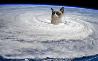 Правила поведения при тайфуне