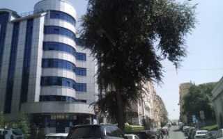 Изменение площади квартиры в росреестре