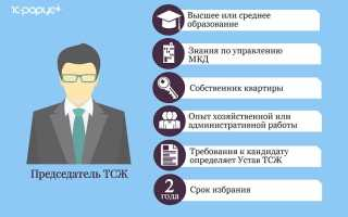 Подробная информация о профессии президента ТСЖ: роли и обязанности, зарплата президента