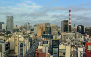 Программа пребывания в японии образец на английском