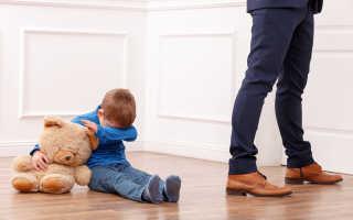 Подробности лишения родительских прав |